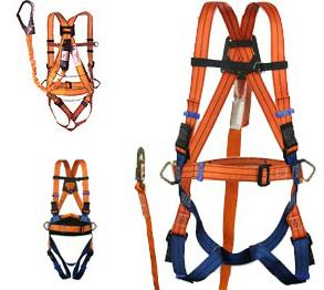 5 cinturones de seguridad